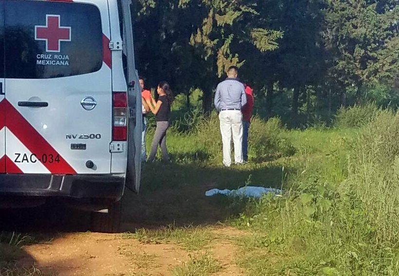 ¡Caballo aplasta y mata a un menor de 4 años en la comunidad de Laguna Seca!