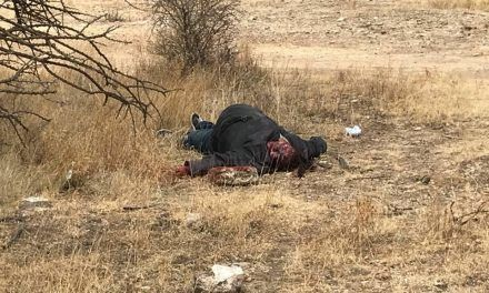 ¡Ejecutaron a una mujer en Fresnillo: la degollaron y le dejaron caer una piedra en la cabeza!