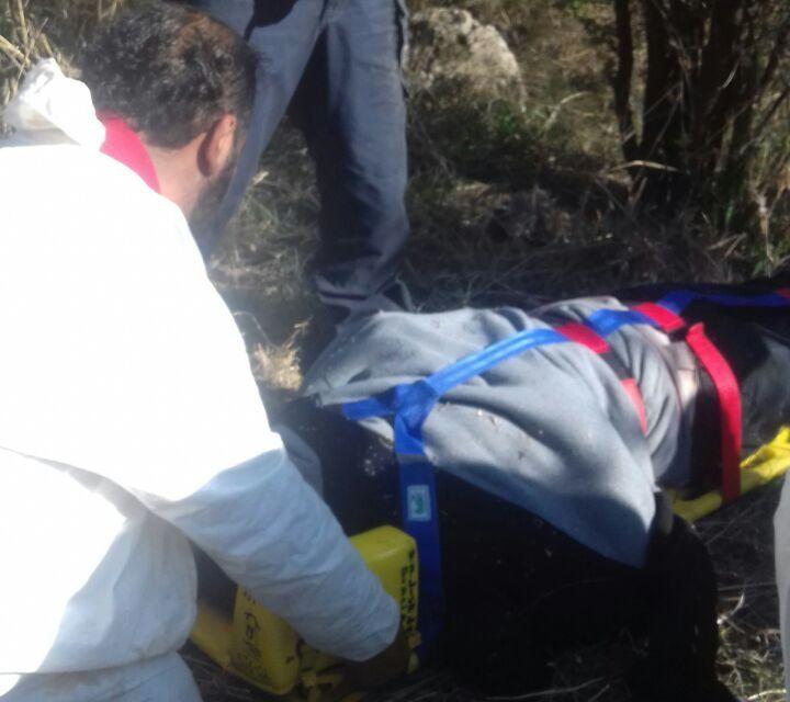 En un trabajo conjunto se logró rescate de un trabajador de Conagua que fue atacado por un enjambre de abejas