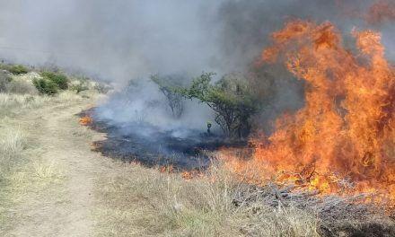 Fue sofocado incendio en Calvillo