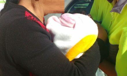 Auxilian oficiales estatales y municipales a una mujer que dio a luz a bordo de un vehículo en Jesús María