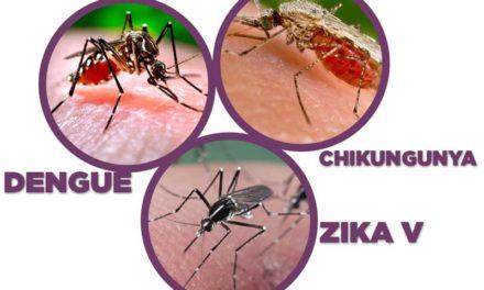 ¡Recomendaciones para evitar la fiebre Chikungunya, Zika y Dengue, en estas vacaciones!