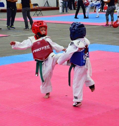 ¡Torneo Municipal Intramuros de TaeKwondo en Tepezalá!