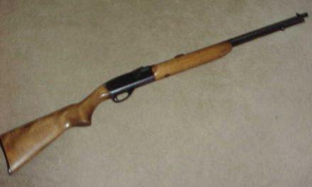 Se le aseguró un arma de fuego  y fue detenido en Calvillo