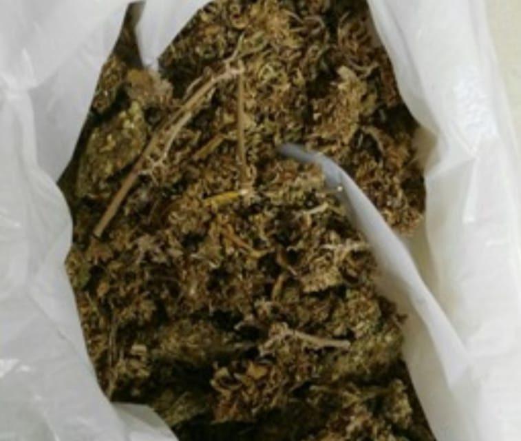 Elementos de la SSPE detienen en VNSA  a sujeto con 100 gramos de marihuana