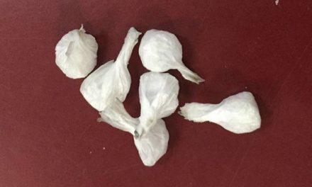 Aseguran elementos de la SSPE a un sujeto con droga