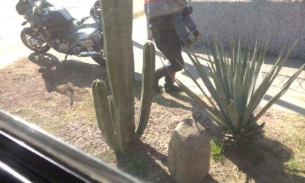 Policías auxilian a madre de familia a localizar a su hijo