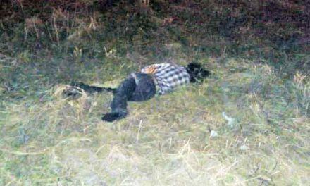¡Muere de manera espantosa un hombre de la tercera edad en Pabellón de Arteaga!