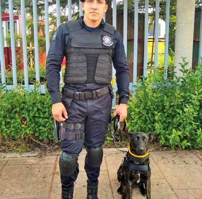 ¡Policía mata por accidente a su compañero en el K9 Municipal Aguascalientes!