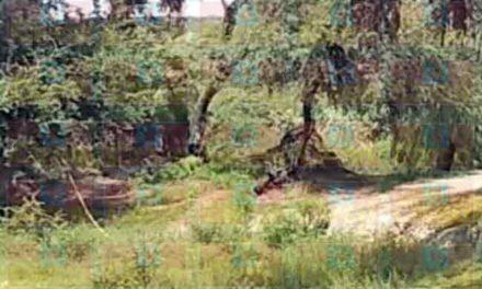 ¡Hallan restos humanos en otra narco-fosa en Lagos de Moreno!