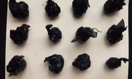 Capturan en Cosío a sujeto con 300 gramos de marihuana, el cual contaba con una orden de aprehensión por fraude
