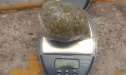Presunto distribuidor de enervantes, fue detenido con 15 gramos de marihuana, en el municipio de San Francisco de los Romo