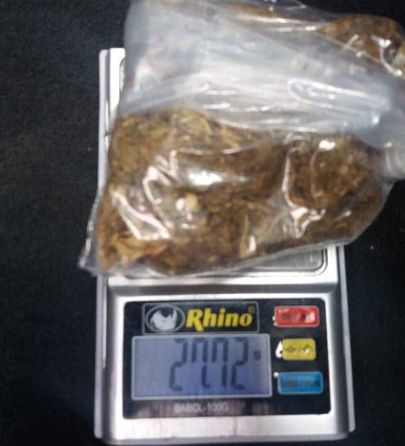 """Cae sujeto conocido como """"El Gallero"""" con cerca de 30 gramos de marihuana en el municipio de San Francisco de los Romo"""