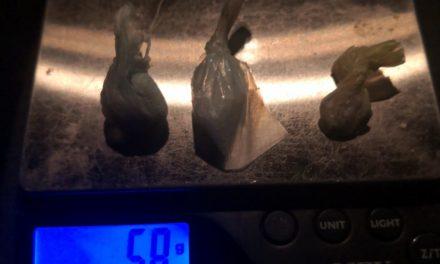 Ciclista en posesión de droga crystal, fue detenido en el municipio de Jesús María