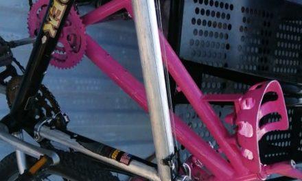En distintos casos, dos sujetos fueron detenidos por robo de bicicletas en el municipio de Pabellón de Arteaga