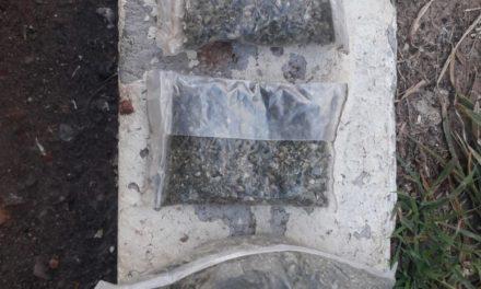 CAPTURAN EN RINCÓN DE ROMOS, A SUJETO CON CERCA DE 75 GRAMOS DE MARIHUANA