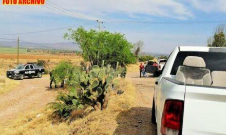 ¡Hallaron a 2 hombres amarrados, torturados y ejecutados en Guadalupe!