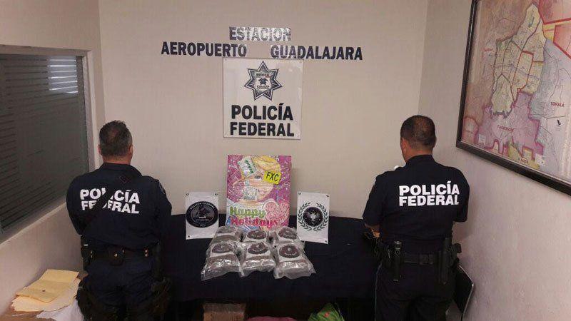 ¡Policía Federal asegura 3.5 kgs de droga en empresa de paquetería en Jalisco!