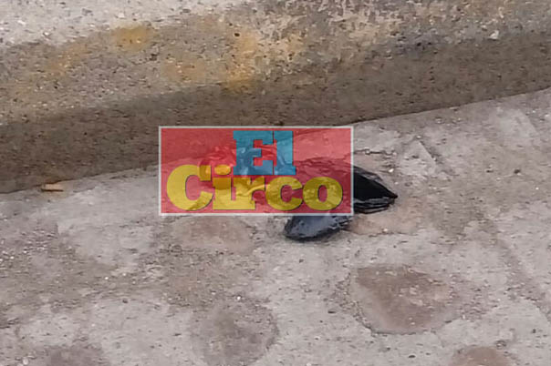 ¡Encontraron un feto en una bolsa en Unión de San Antonio, Jalisco!