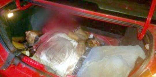 """¡#Ejecutan y #descuartizan los cuerpos de unhombre y una mujer y los """"encajuelan"""" en #Calera, #Zacatecas!"""