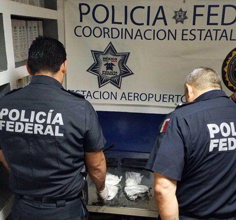 ¡Policía Federal asegura cocaína en empresa de paqueteria!