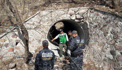 ¡Policía Federal recupera barras de oro y plata en Jalisco!